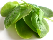spinach at high risk of radioactive contamination