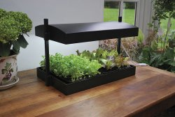 Adjustable Grow Light System For Soil Based Indoor Herb Gardens