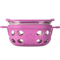 Silicone & Glass Lunch Box