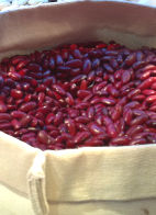 Health Benefits Of Red Kidney Beans