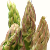 Asparagus - The Next Superfood?
