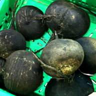 Why Black Radish is Healthy