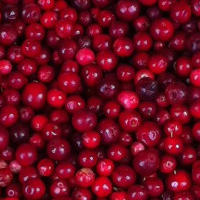 Cranberries: Superfood with Many Health Benefits
