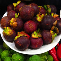 Health Benefits of Mangosteen Fruit Powder