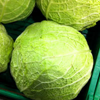Savoy Cabbage Health Benefits