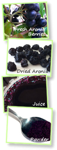 Benefits of Buying Organic Aronia Berries