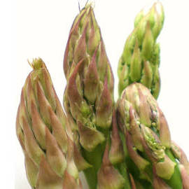 How To Freeze Fresh Asparagus Spears Whole Or Cut Up