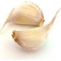 Garlic and its medicinal properties