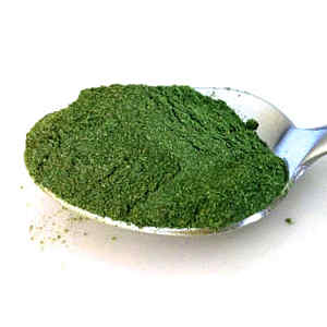 10 Ways to Use Moringa Powder (Plus Tasty Recipes)