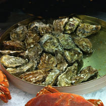 Omega-3 in Oysters