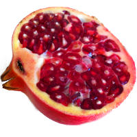 How Pomegranate Fights Prostate Cancer
