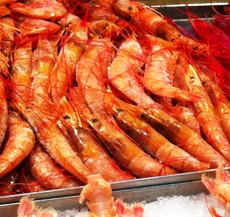 Is Shrimp Cholesterol Good or Bad