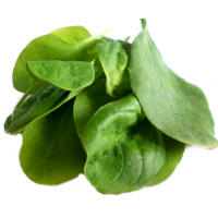Spinach' Iron Content