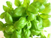 Converting dried basil to fresh